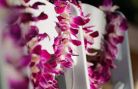 Maui Photographers John Pierre U0027s Photography Maui Wedding Photography Maui