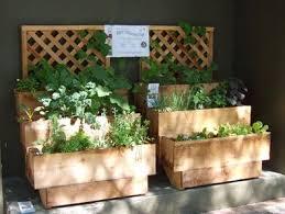 balcony vegeteable garden my vegetable garden planner