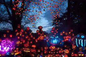 Zoo Lights Boston by Jack O Lantern Spectacular Nighttime Display