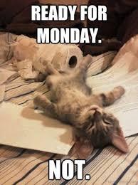 Monday Meme Images - happy monday memes images and monday motivational quotes