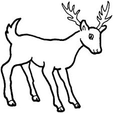 4 best images of family deer sketches printable deer hunting
