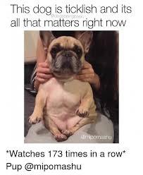 Tickled Memes - 25 best memes about ticklish ticklish memes
