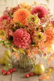 Autumn Flower 1790 Best Flowers Images On Pinterest Flower Flower