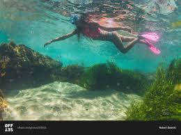 California snorkeling images Woman snorkeling near divers cove in laguna beach california jpg