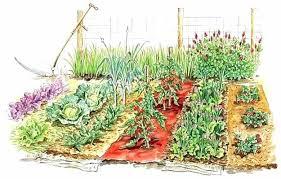 Garden Layout Software How To Plan A Garden Elcorazon Club