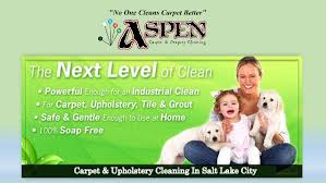 carpet upholstery cleaning in salt lake city 1 638 jpg cb 1478339518