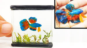 diy betta fish tank inks resin polymer clay tutorial how to