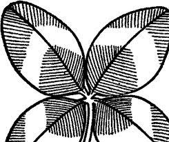 vintage four leaf clover image the graphics fairy