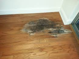 Water Damaged Laminate Flooring How To Fix Water Damaged Wood Floor 10 The Minimalist Nyc