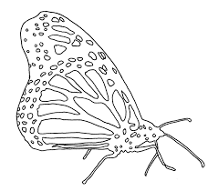 coloring page butterfly monarch monarch butterfly minnesota pollution control agency