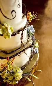 102 Best Artistic Wedding Cakes Images On Pinterest Biscuits
