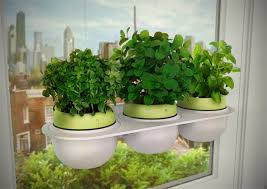 kitchen gardening ideas commercial hydroponics systems small garden ideas