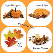 fall scents new fall scents from mojilife direct sales member article by