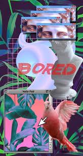 Meme Wallpaper Iphone - dank wallpaper tumblr