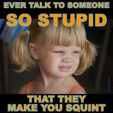You Stupid Meme - lolheaven com ever talk to someone so stupid that they make you
