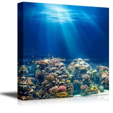coral reef home decor best decoration ideas for you
