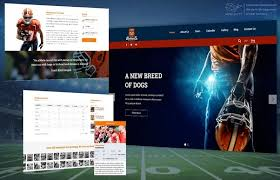cool app websites which sports teams have their own mobile app quora