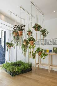 plant stand hanging plant holders indoor marvelous picture