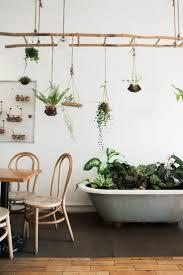 best 25 plant ladder ideas on pinterest ladder shelf diy