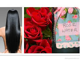 diy how to make rose water for hair growth at home remedies for