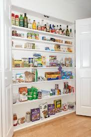 Kitchen Wall Storage Solutions - kitchen pantry shallow spaces are best no stuff lost in back