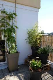 bambus fã r den balkon chestha dekor europalette balkon