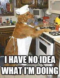 Cooking Meme - cooking meme the best stuff online