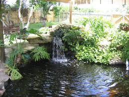 building backyard ponds u2014 home design lover best backyard ponds