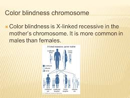 Does Colour Blindness Affect Males Or Females More Color Blindess By John Daniel U201cjd U201d Fogarty And Jude Kweku Poku