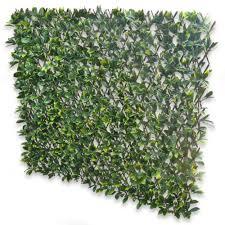 buy gardenkraft gardenkraftgardenkraft dark ivy expandable
