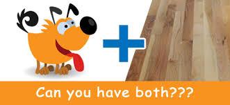 inside dogs and hardwood floors