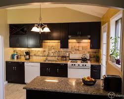 Birch Kitchen Cabinets Houzz - Birch kitchen cabinet
