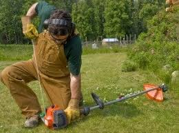 Lawn Care Programs For Do It Yourself Lawn Care Services What To Know About What You Need