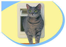 on sale quality cat supplies from high tech pet