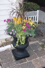 pleasant planter design ideas with black color stone planter and