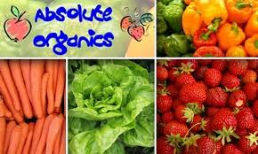 fruit delivered to your door half organic produce delivery absolute organics groupon