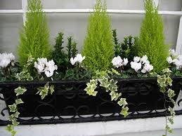 the 25 best window boxes ideas on pinterest window box flowers