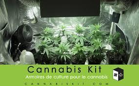 chambre de culture interieur chambre de culture cannabis interieur evtod