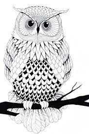 white owl drawing clipartxtras