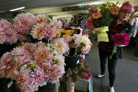 seattle flowers seattle flower farmers co op grows into blooming success the