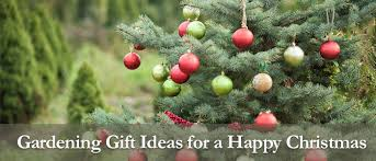 Garden Gifts Ideas Gardening Gift Ideas For A Happy Mr Fothergills Co Uk