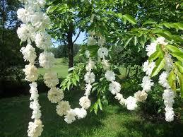 how to make a flower garland for wedding wedding garland ivory