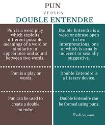 difference between pun and double entendre