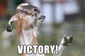 Victory Meme - victory goat meme on imgur