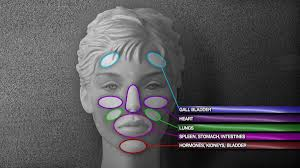 Face Mapping Pimples Acne Mapping Pimples Aren U0027t Just There To Embarrass Fox8 Com