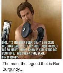 Ron Burgundy Meme - ohh it s the deep burn oh it s so deep oh ican barely lift my right