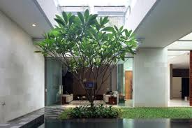 garden rooftop garden house with glass house architecture modern
