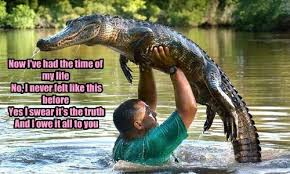 Crocodile Meme - animal capshunz alligator funny animal pictures with captions