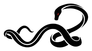 snake png picture hq png image freepngimg