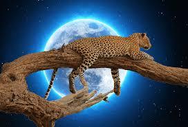 moon september meaning 2017 thrive on spiritual magazine
